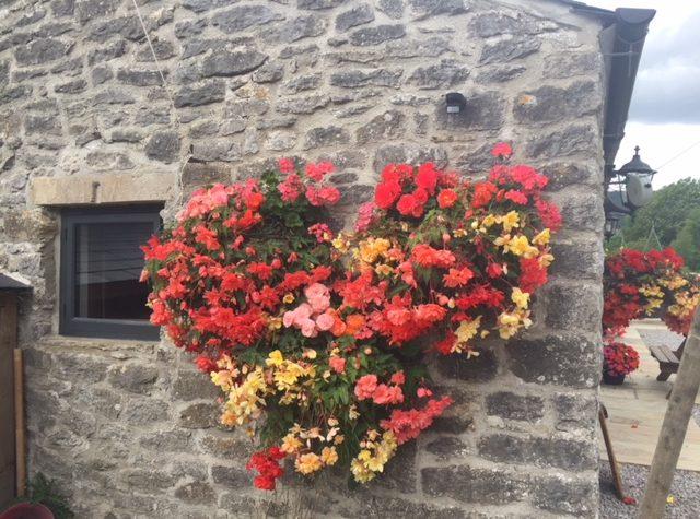 Speedwell Barn Hayracks dog friendly accommodation in castleton